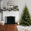 6ft National Christmas Tree Company Kincaid Spruce Artificial Christmas Tree Bulb Clear - image 2 of 3