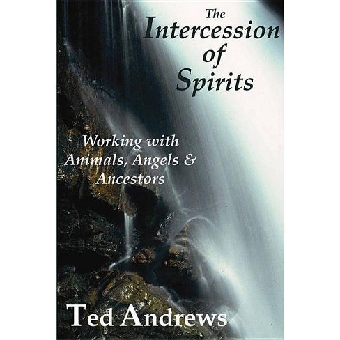 The Intercession of Spirits - by  Ted Andrews (Paperback) - image 1 of 1