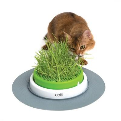 Catit Senses 2.0 Grass Planter for Cats