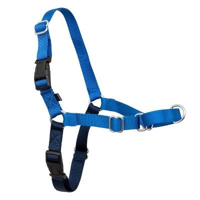 PetSafe Easy Walk Adjustable Dog Harness - Royal Blue