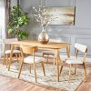 Alma 5pc Mid-Century Dining Set - Christopher Knight Home - image 2 of 4