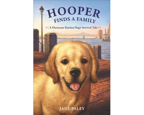 Hooper Finds a Family : A Hurricane Katrina Dog's Survival Tale -  Reprint by Jane Paley (Paperback) - image 1 of 1