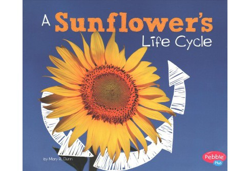 Sunflower's Life Cycle (Paperback) (Mary R. Dunn) - image 1 of 1