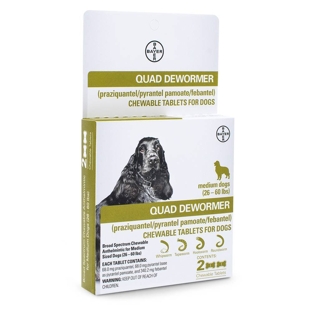 Bayer Quad Dewormer Chewable Tablets for Dogs - Medium - 26-60lbs