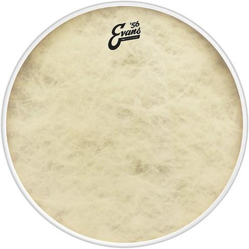 Evans EQ4 Calftone Bass Drum Head - image 1 of 4