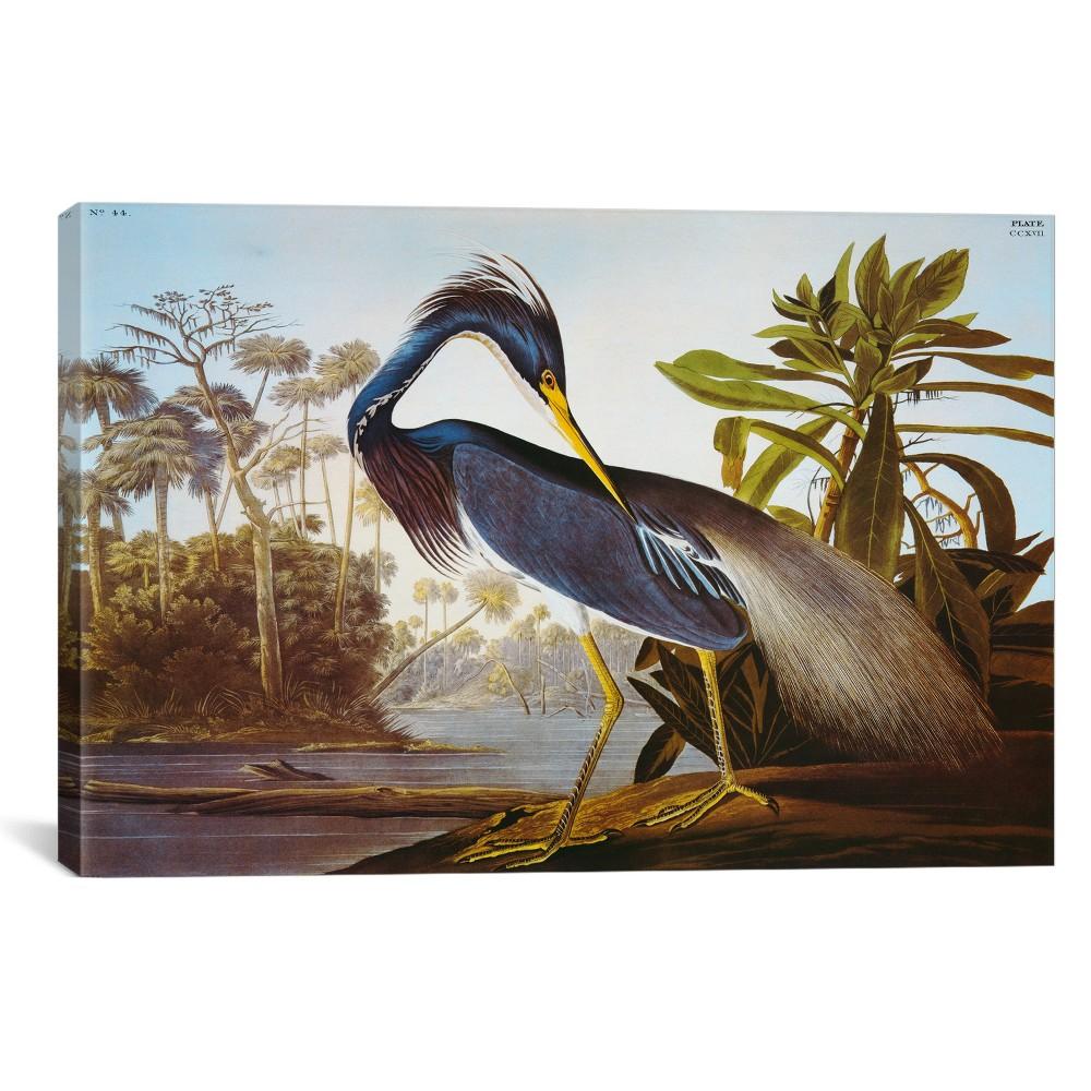 Louisiana Heron by John James Audubon Canvas Print 12 x 18 - iCanvas, Soft Sky