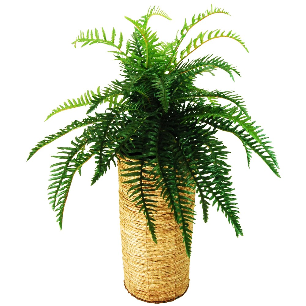 Image of Artificial Fern - Green - 4ft - Lcg Florals