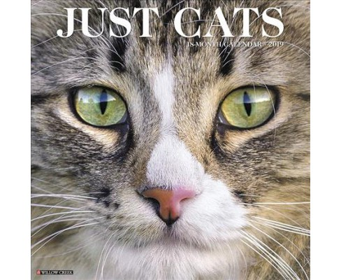 Just Cats 2019 Calendar -  (Paperback) - image 1 of 1