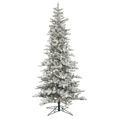 Vickerman 6ft Pre-Lit Artificial Christmas Tree Green Padroni Fir  - Clear LED Lights - image 1 of 1