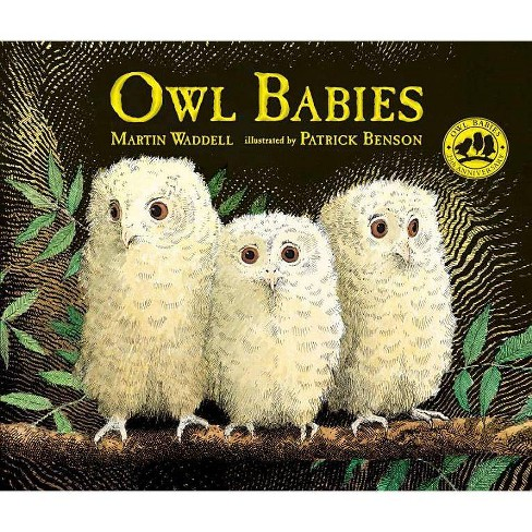 Owl Babies - by  Martin Waddell (Hardcover) - image 1 of 1
