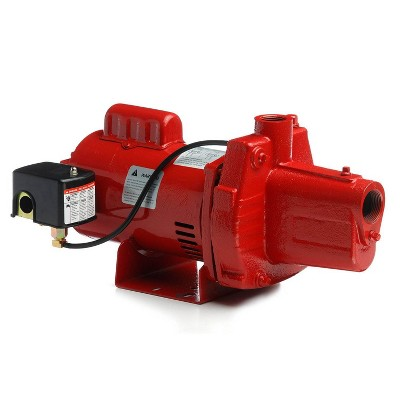 Red Lion RJS-100-PREM 1HP Cast Iron Thermoplastic Shallow Well Jet Pump   602208
