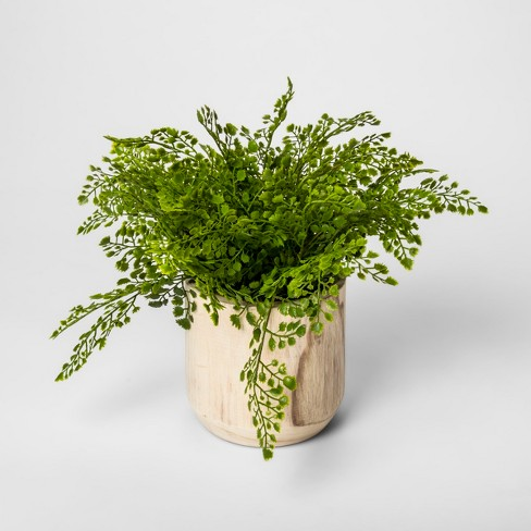 """13"""" Potted Artificial Maiden Hair Fern Green - Threshold™ - image 1 of 2"""