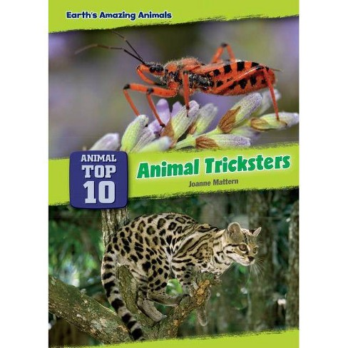 Animal Tricksters - (Core Content Science -- Animal Top Ten) by  Joanne Mattern (Hardcover) - image 1 of 1