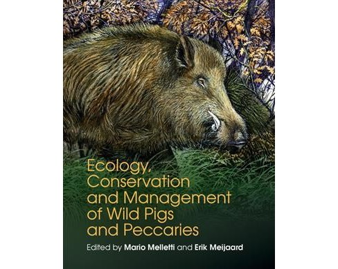Ecology, Conservation and Management of Wild Pigs and Peccaries (Hardcover) (Erik  Meijaard) - image 1 of 1