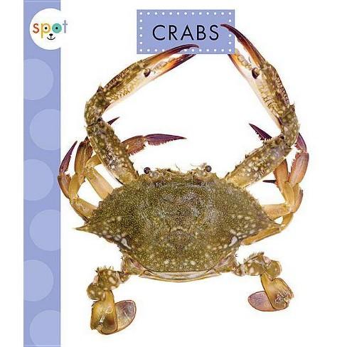 Crabs - (Spot Ocean Animals) by  Mari C Schuh (Paperback) - image 1 of 1