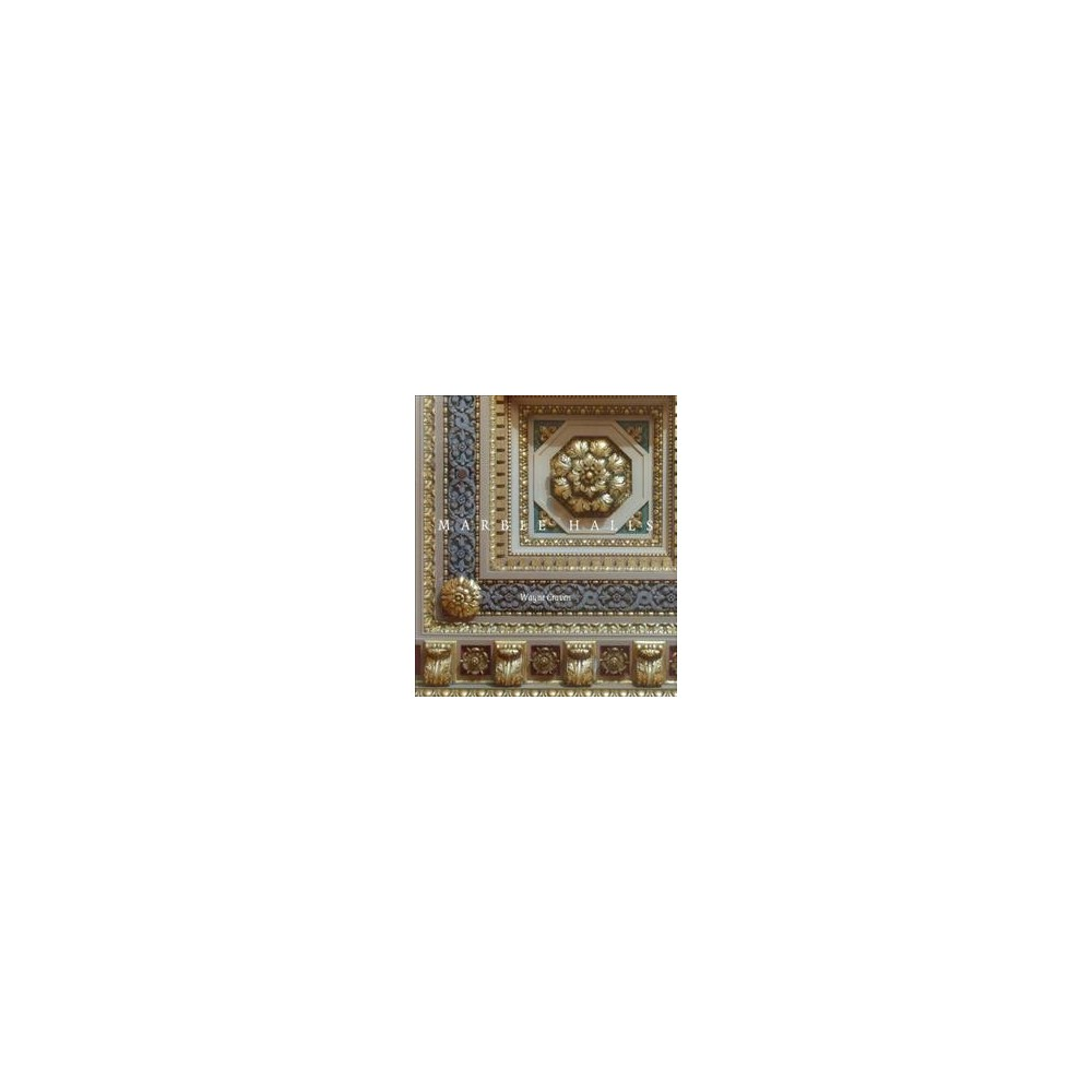 Marble Halls : Beaux-Arts Classicism and Civic Architecture in the Gilded Age - (Hardcover)