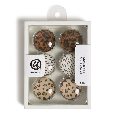 U Brands 6ct Glass Magnets - Can't Be Tamed