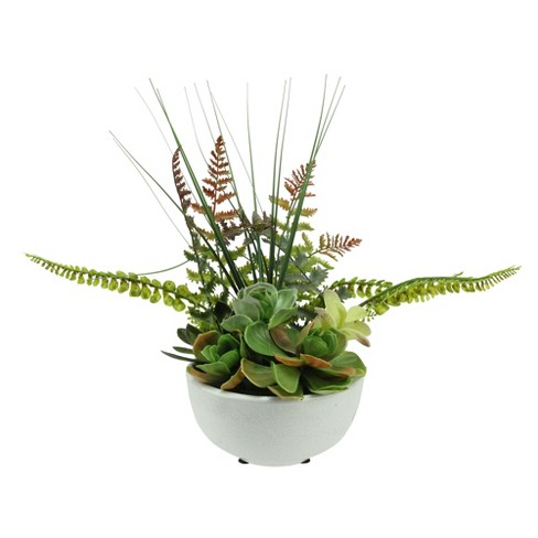 """Northlight 11.5"""" Mixed Succulent and Fern Artificial Potted Plant - Green/White - image 1 of 2"""