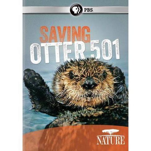Nature: Saving Otter 501 (DVD) - image 1 of 1