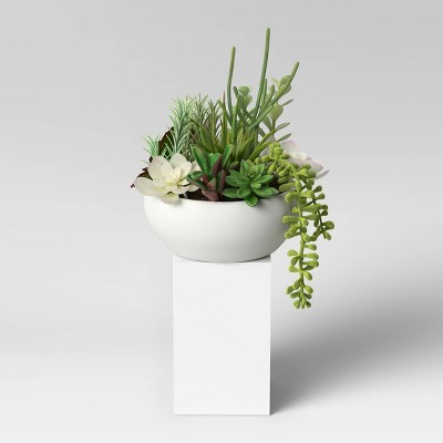 Succulent in Pot Green/White - Project 62™