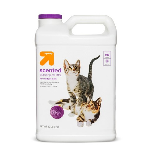Scented Clumping Cat Litter - Up & Up™ - image 1 of 1
