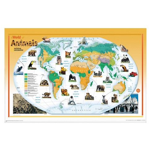National Geographic World of Animals Nat Geo Poster - Green/Yellow - image 1 of 2