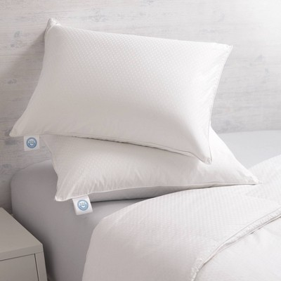 2pk Goose Down Bed Pillow - Allied Home