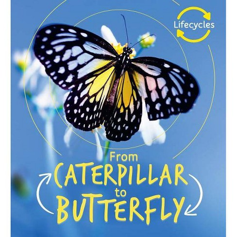 From Caterpillar to Butterfly - (Life Cycles) by  Camilla De La Bedoyere (Hardcover) - image 1 of 1