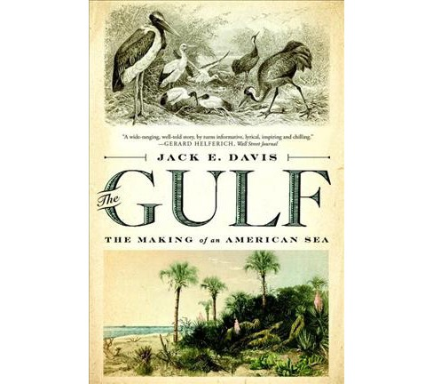 Gulf : The Making of an American Sea -  Reprint by Jack E. Davis (Paperback) - image 1 of 1
