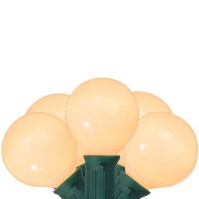 Northlight 20ct G50 Globe Party Outdoor String Lights Opaque White - 19' Green Wire