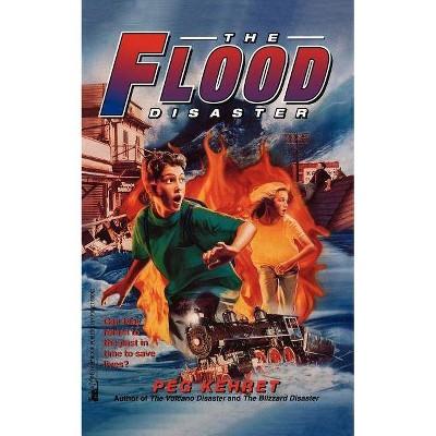 The Flood Disaster - by  Peg Kehret (Paperback)