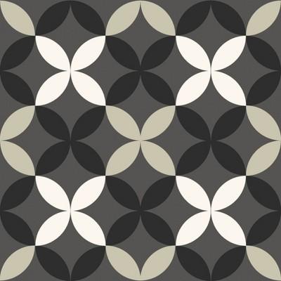 4'x5' Set of 20 Arbor Peel & Stick Floor Tiles Black/Gray - Brewster
