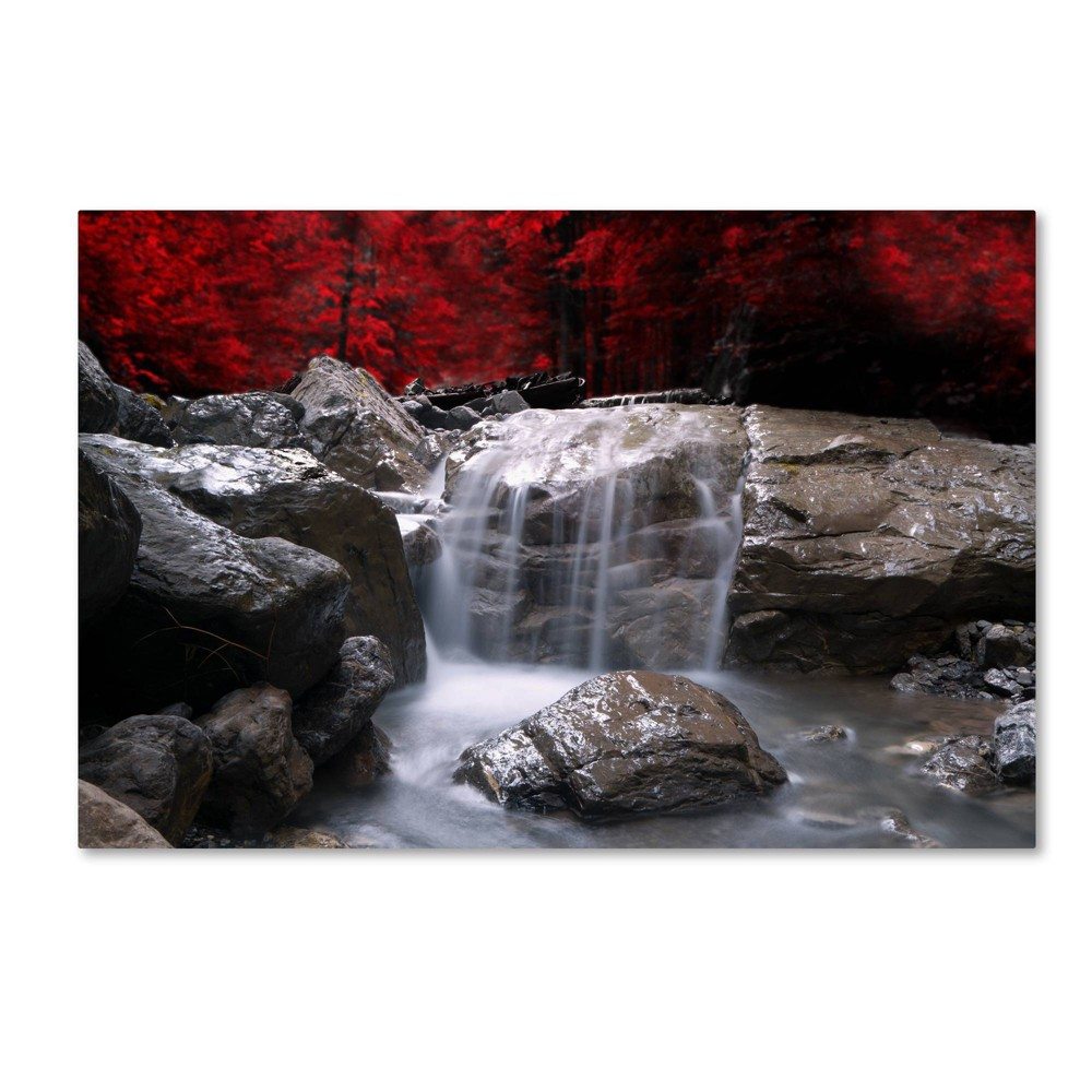 'Red Vison' by Philippe Sainte-Laudy Ready to Hang Canvas Wall Art, Multi-Colored