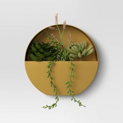 Large Wall Hanging Succulents - Project 62™