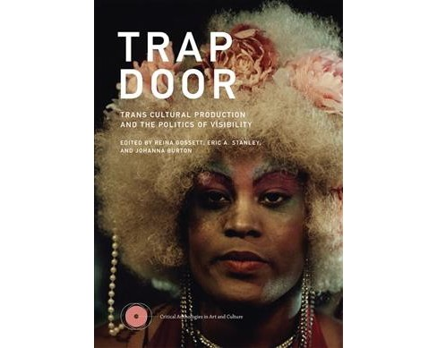 Trap Door : Trans Cultural Production and the Politics of Visibility -  (Hardcover) - image 1 of 1