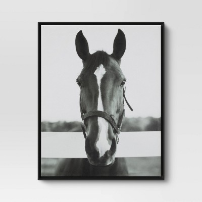 "24"" x 30"" Black and White Horse Framed Canvas - Threshold™"