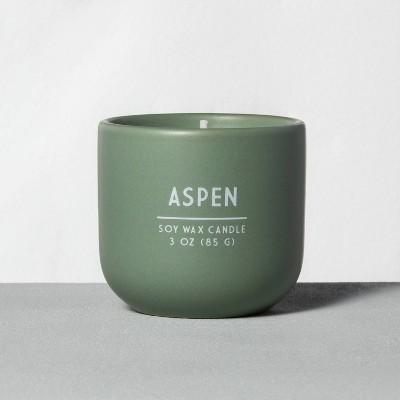 3oz Holiday Ceramic Candle Aspen - Hearth & Hand™ with Magnolia