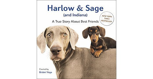 Harlow and Sage (and Indiana) : A True Story About Best Friends (Hardcover) - image 1 of 1