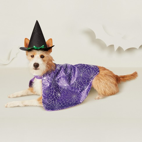 Witch Dog Costume - Purple - Hyde & EEK! Boutique™ - image 1 of 3