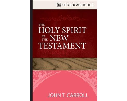 Holy Spirit in the New Testament -  (Core Biblical Studies) by John T. Carroll (Paperback) - image 1 of 1