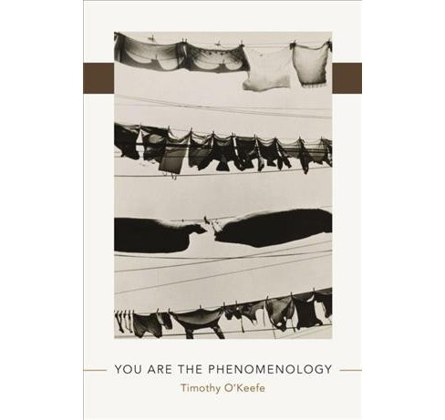 You Are the Phenomenology -  by Timothy O'Keefe (Paperback) - image 1 of 1