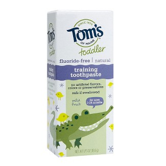Toms of Maine® Mild Fruit Natural Toddler Training Toothpaste - 1.75oz