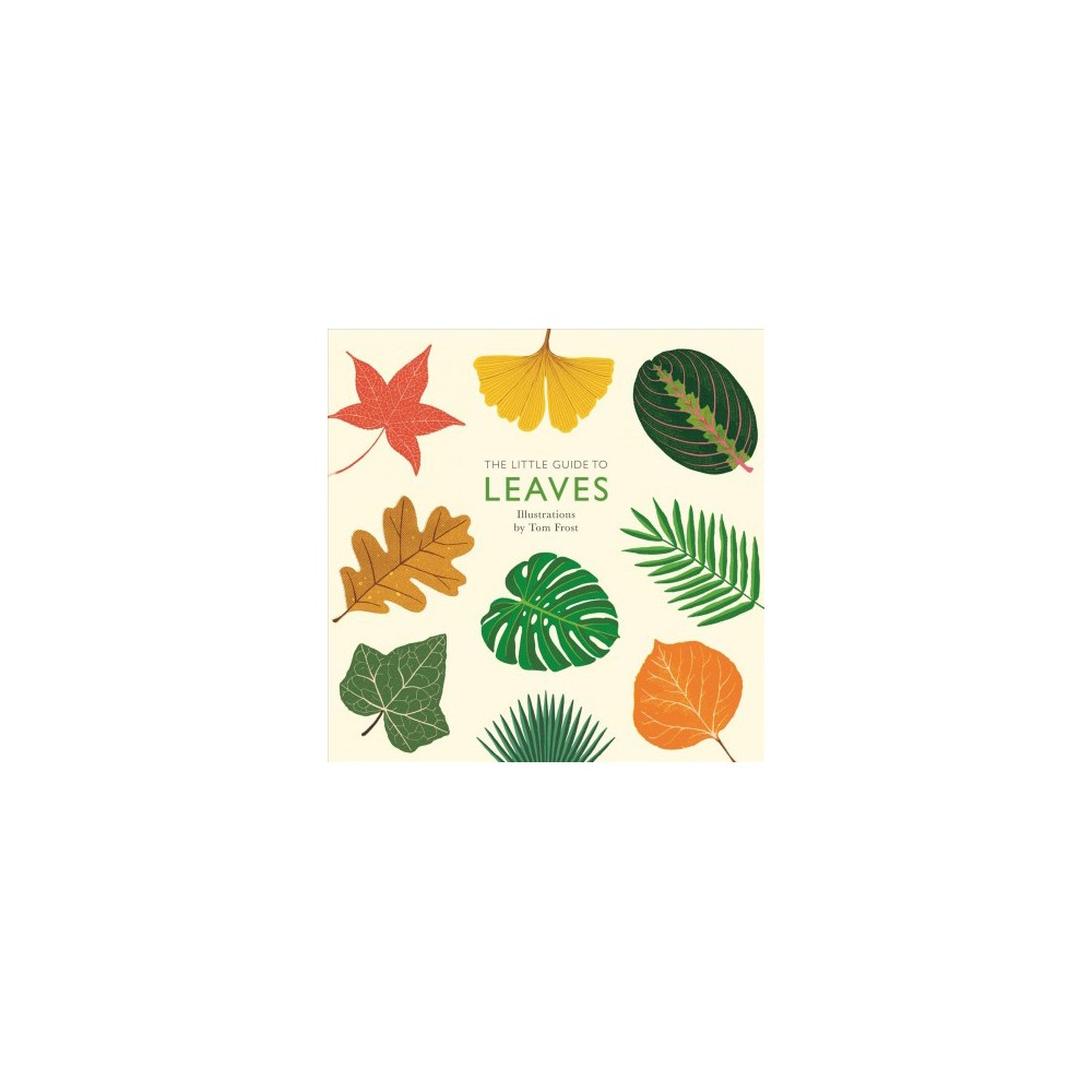 Little Guide to Leaves - by Alison Davies (Hardcover)