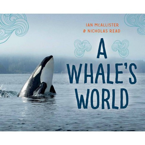 A Whale's World - (My Great Bear Rainforest) by  Nicholas Read (Hardcover) - image 1 of 1