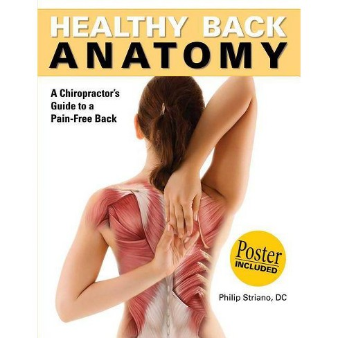 Healthy Back Anatomy - (Anatomies of) 2 Edition by  Philip Striano (Paperback) - image 1 of 1