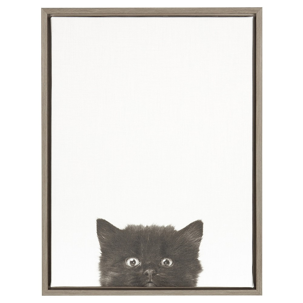 24 34 X 18 34 Kitten Framed Canvas Art Gray Uniek
