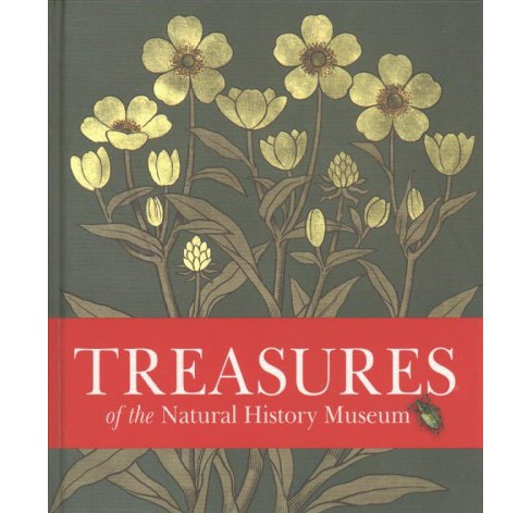 Treasures of the Natural History Museum -  by Vicky Paterson (Hardcover) - image 1 of 1