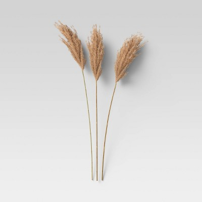 3pc Giant Reed Dried Bundle Coal - Threshold™