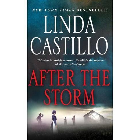After the Storm - (Kate Burkholder, 7) by  Linda Castillo (Paperback) - image 1 of 1