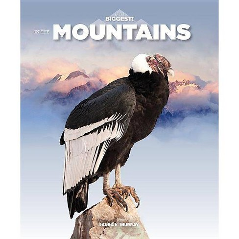 In the Mountains - (I'm the Biggest) by  Laura K Murray (Paperback) - image 1 of 1